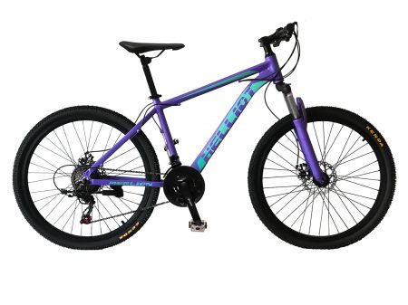 mountain bike lila