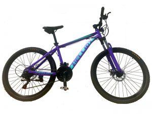 mountain bike premium